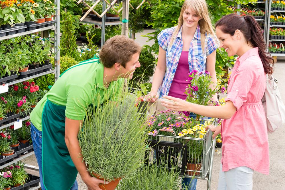 Die Pflanzenschule - unsere Zielgruppe