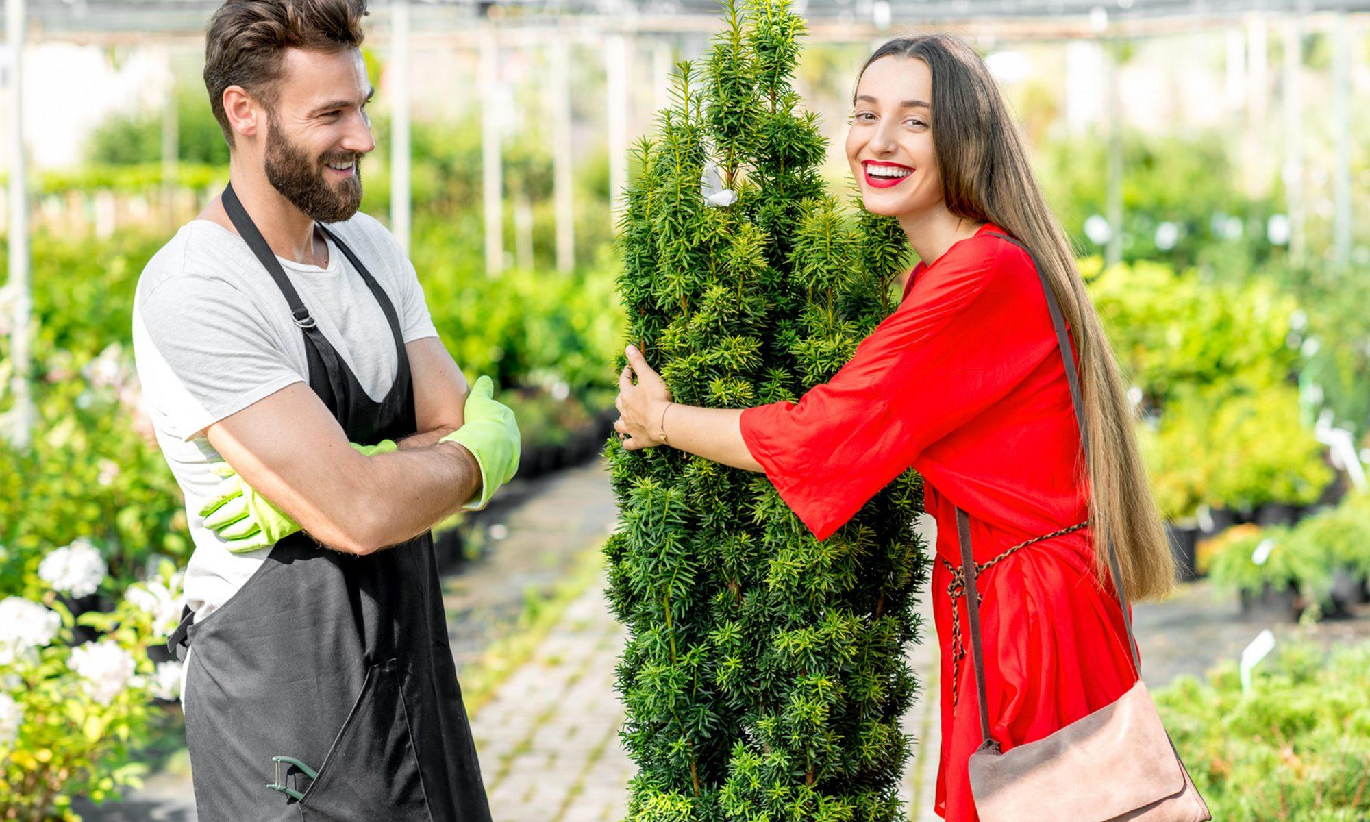 Die Pflanzenschule - Baustein 9